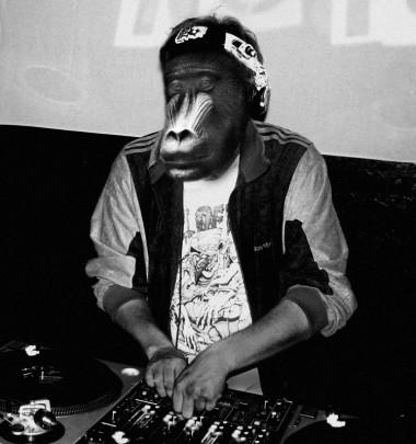 Rhythm Baboon